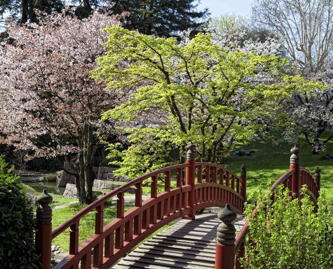 Jardin japonais paris giardino giapponese parigi pazzi for Albert kahn jardin japonais