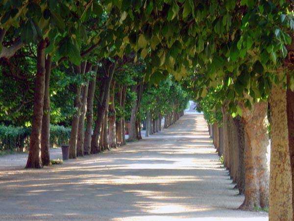 Jardin-des-plantes-Paris0030