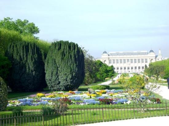 paris-jardin-plantes